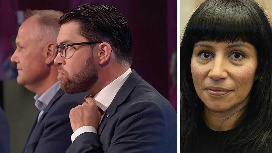 Samtidigt som det hurras över välfärdsmiljarder så har vi varit med och hjälpt till att tvätta SD. Vänsterpartiet har låtit sig utnyttjas för att M och KD ska kunna närma sig Åkesson, skriver Rossana Dinamarca.