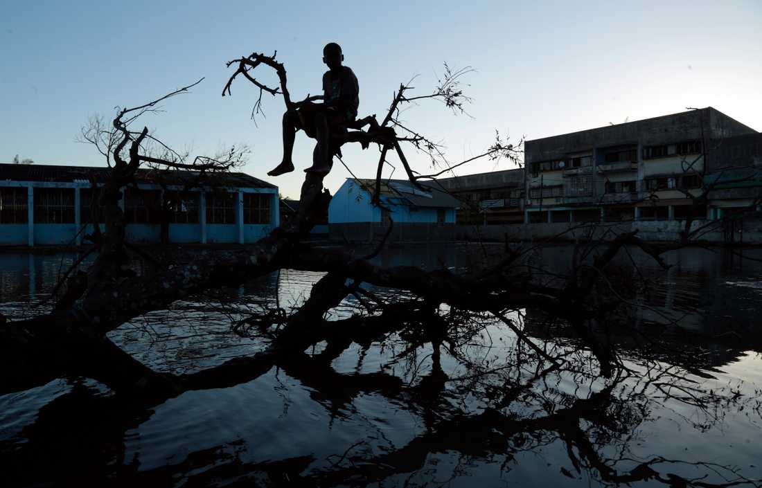 Staden Beira var en av de värst drabbade platserna av cyklonen Idai, som drog fram över bland annat Moçambique i mars i år.