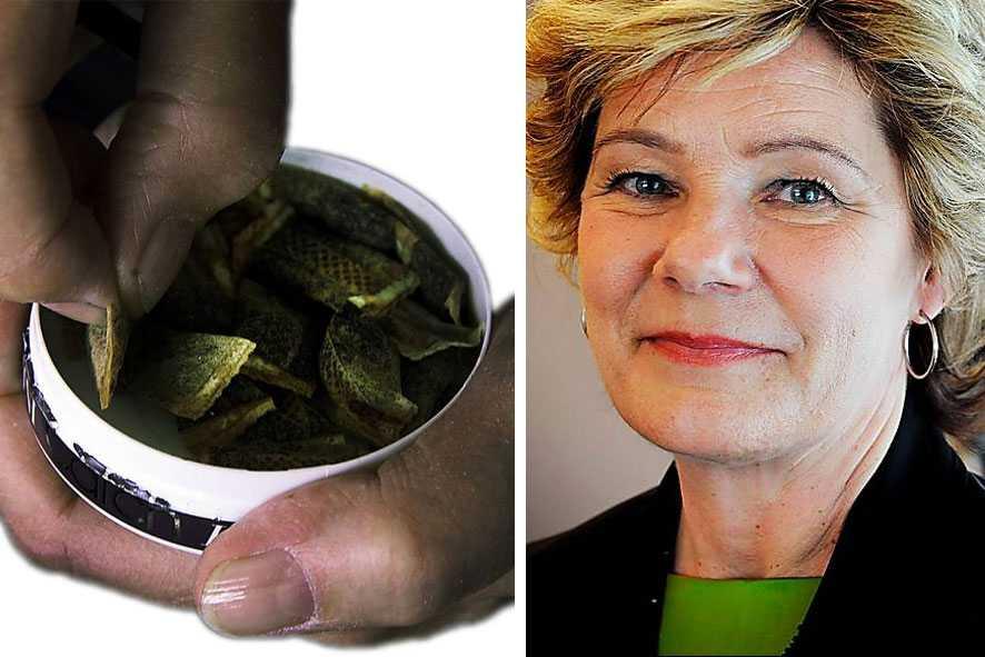 """""""I exportfrågan har vi inte möjlighet att nå framgång"""", säger ansvariga snusministern Maria Larsson (KD)."""