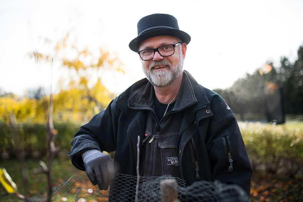 Så tar du bäst hand om trädgården i vinter. Bosse Rappne tipsar om hur du skyddar träd och buskar från harar och rådjur.