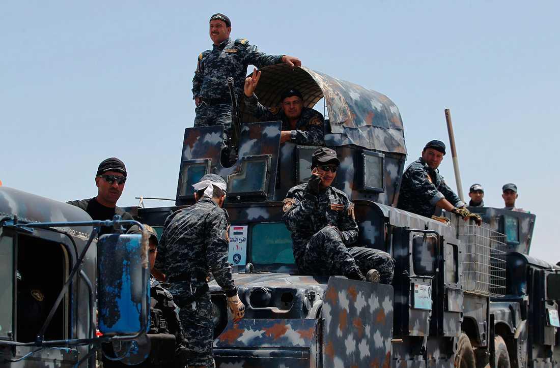 Irakiska säkerhetsstyrkor förbereder sig inför offensiven mot Falluja.