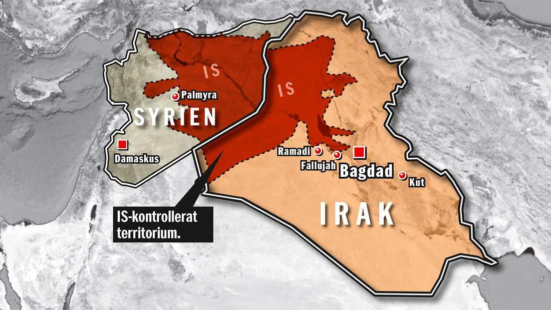 Här styr IS. Område som kontrollerades av Islamiska staten i maj 2015.