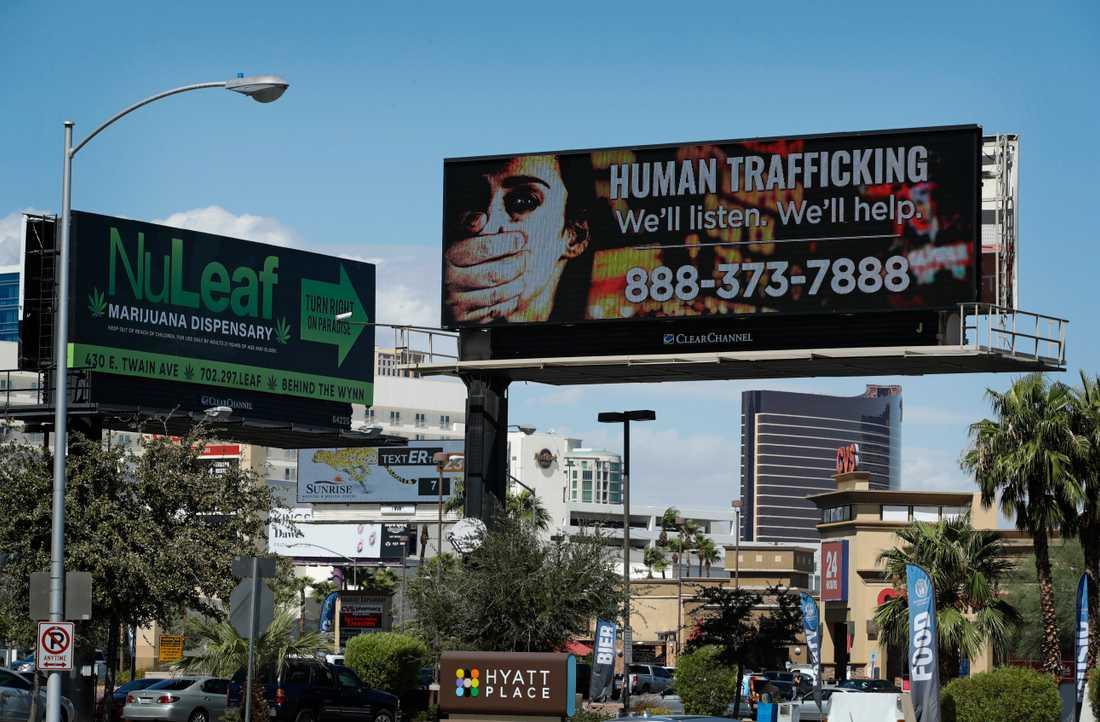En skylt med numret till amerikanska National Human Trafficking Hotline i Las Vegas, USA. Arkivbild.