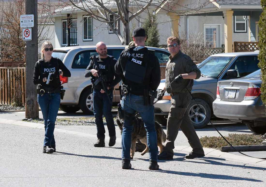 Fyra personer har hittats döda i kanadensiska Penticton. En 60-årig man har överlämnat sig själv till polisen.