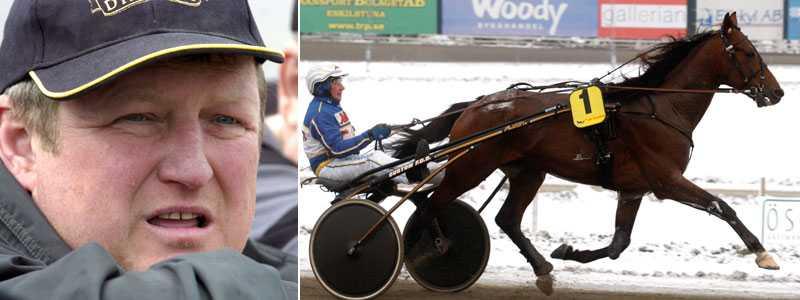 FRAMGÅNG Nils Enqvists före detta hästar gör succé. Femårige To And Fro har på sistone vunnit flera lopp.