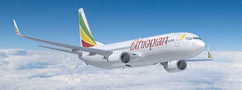 Det var ett flygplan av den här typen, Boeing 737-800, som störtade.