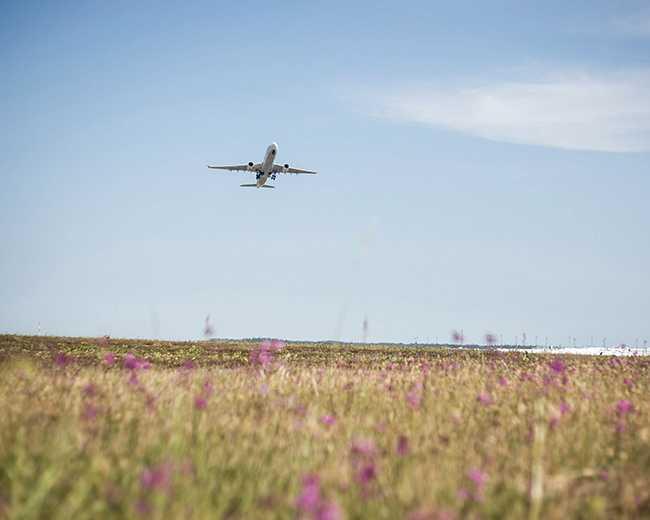 Vissa dagar kommer över 100 000 passagerare till Arlanda flygplats.