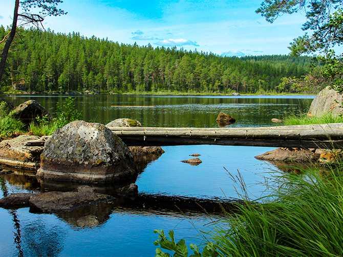 Utflykt till en av Värmlands insjöar.