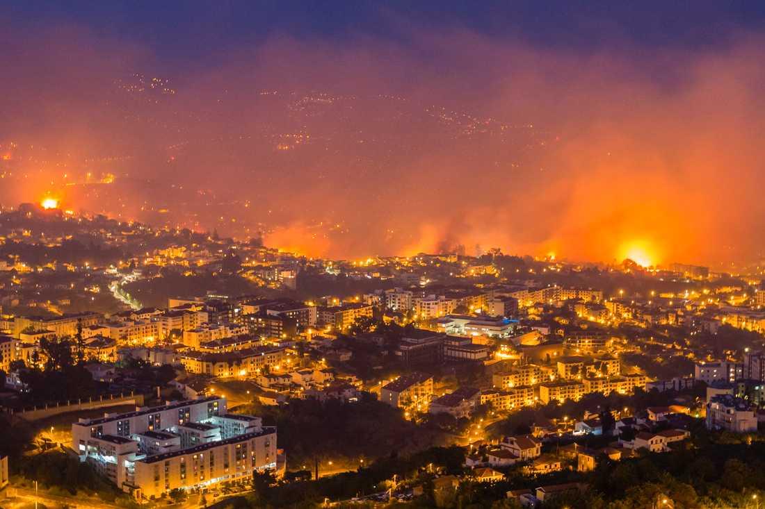 Bränderna i Portugal har nu även blossat upp i turistorten Funchal på Madeira.