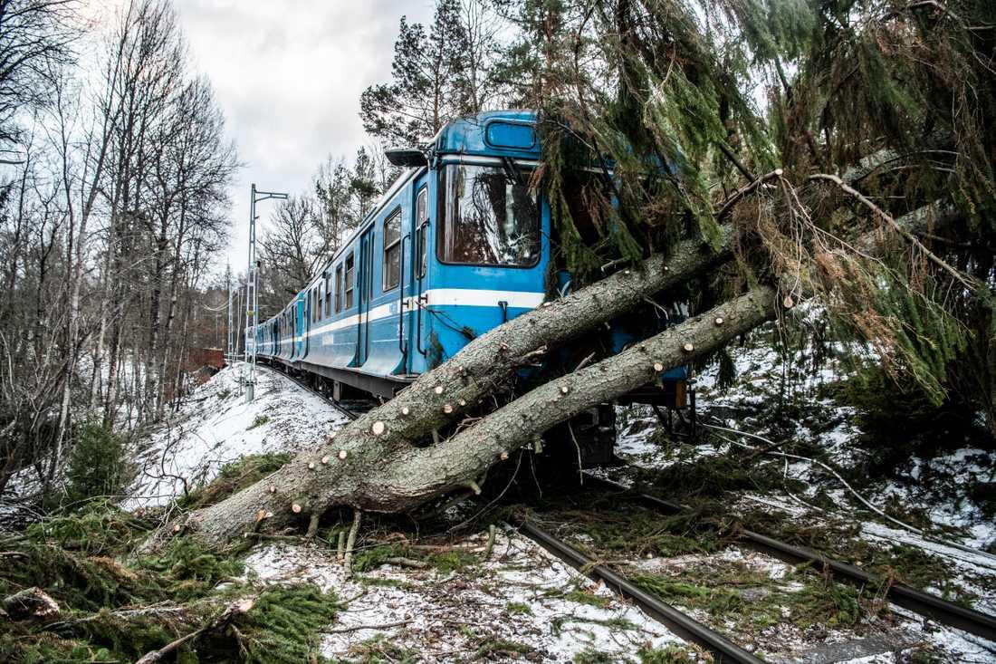 Stormen Alfrida orsakade problem och störningar i hela landet. Träd föll över spåren på Saltsjöbanan mellan Östervik och Saltsö-Duvnäs och rev ned en kontaktledning.