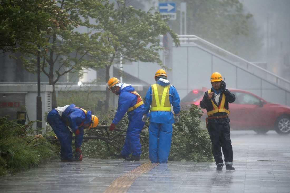 Personal från den lokala myndigheten i Nagoya rensar upp efter fallna träd.