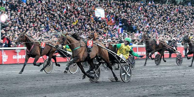 Face Time Bourbon vid förra årets Prix d'Amérique-seger. På söndag kan hästen ta hem andra raka titeln i det som kallas världens tuffaste travlopp.