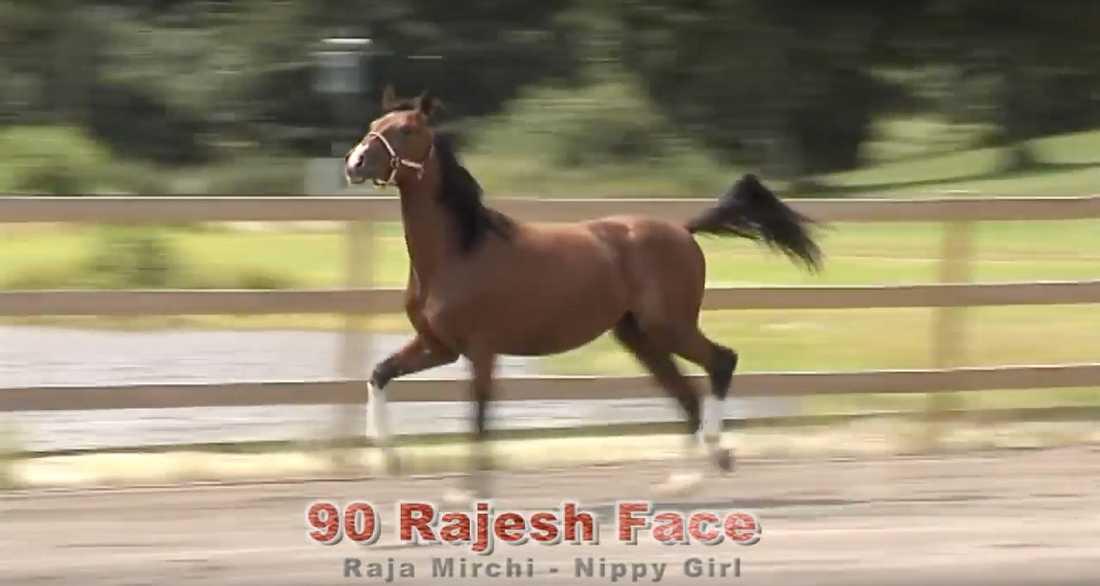 Rajesh Face när han visades upp på auktionen.