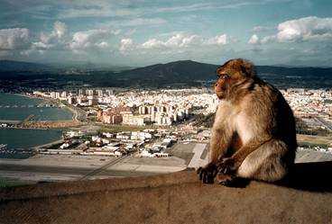 Gibraltarklippan är fem kilometer lång och 400 meter hög.