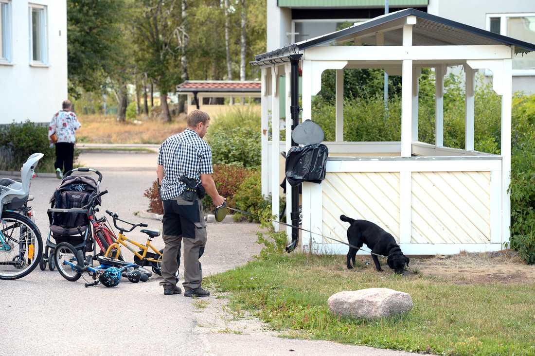 Polisens hundförare söker av området i Surahammar.