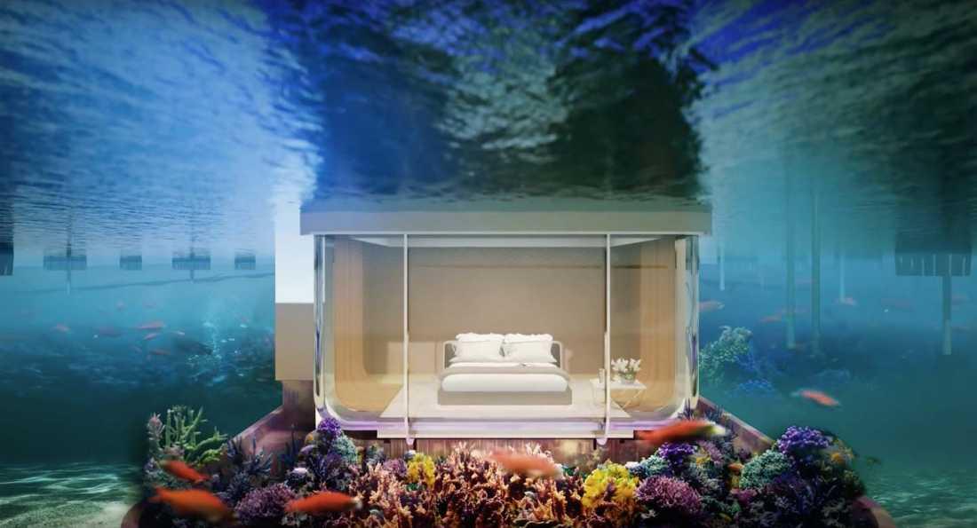 Under vattenytan finns sovrummet som är omgärdat av glasväggar.