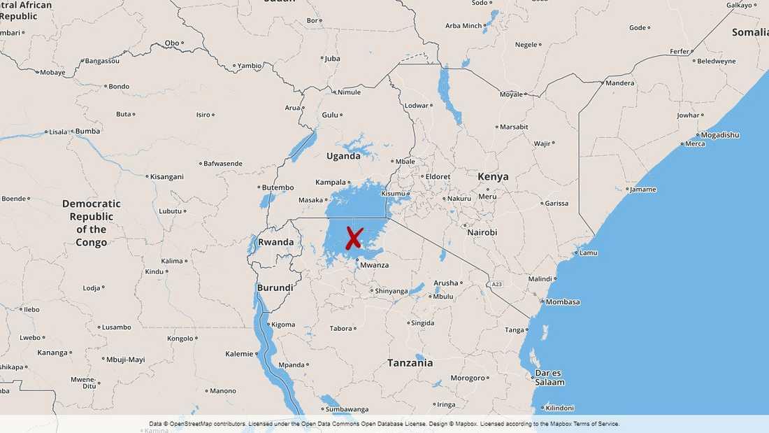 En färja som kan ha haft över 400 passagerare har kapsejsat i Victoriasjön i norra Tanzania.