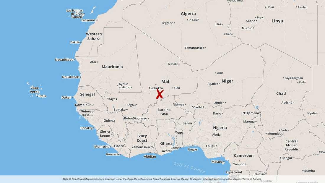 Fem maliska soldater har dödats i ett bakhåll mot en militärkonvoj i centrala Mali.