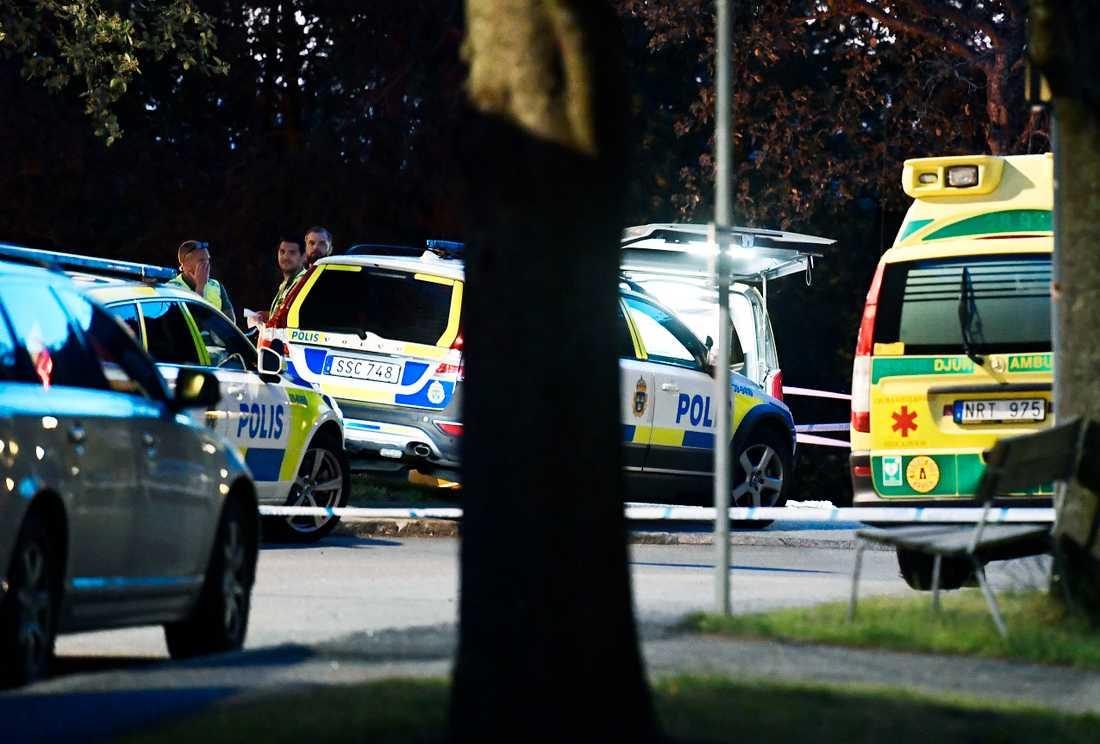 Ett vittne som bor i närheten talar om sju till tio skott.