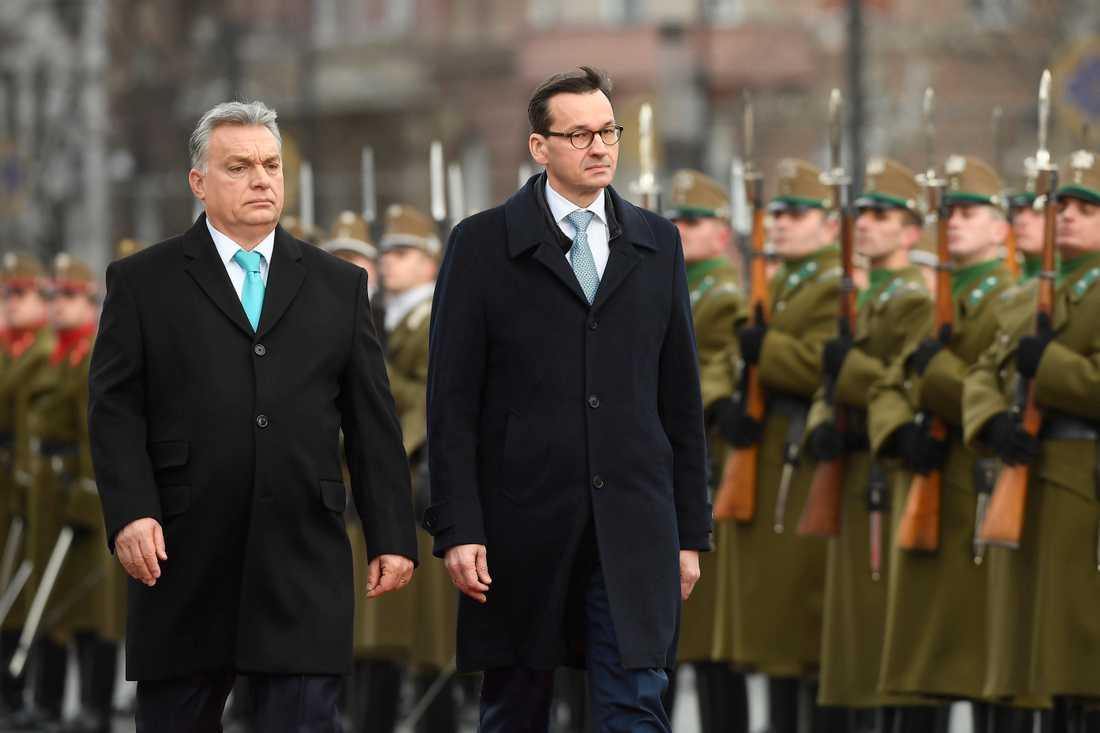 Den nya polska premiärministern Mateusz Morawiecki, till höger, tillsammans med sin ungerska motpart Viktor Orbán under ett statsbesök i Ungern i januari i år. I båda länderna är press- och yttrandefriheten i fara.