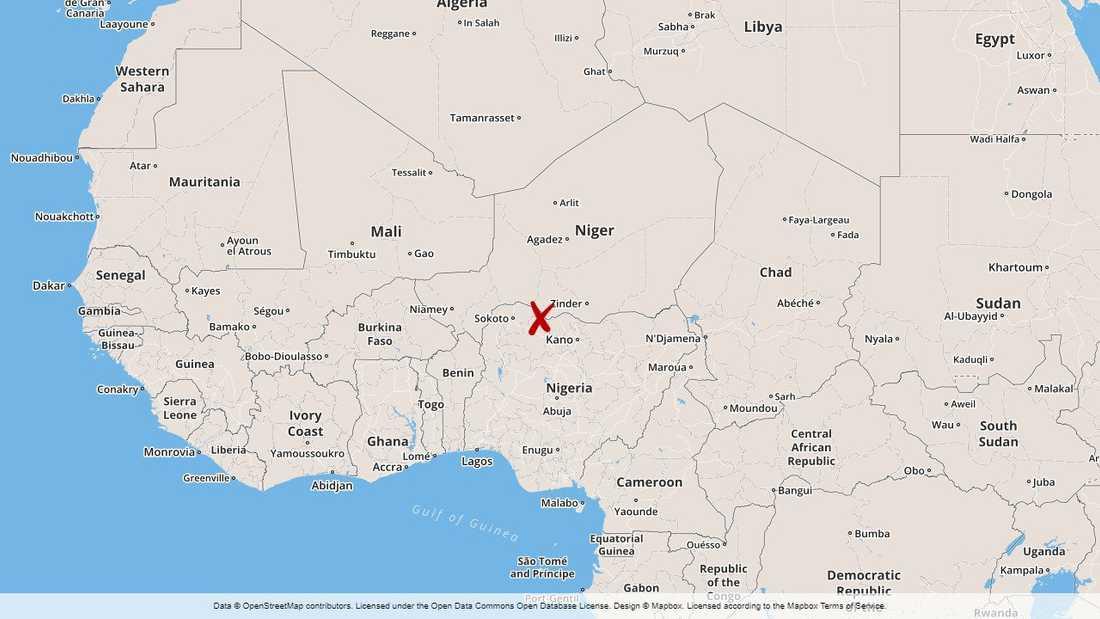 Minst elva personer drunknade när en båt kapsejsade i södra Niger.