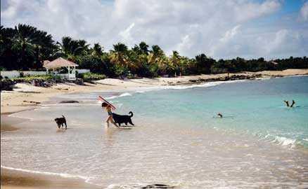 På den franska sidan finns flera lugna och orörda stränder, däribland Plum Beach.