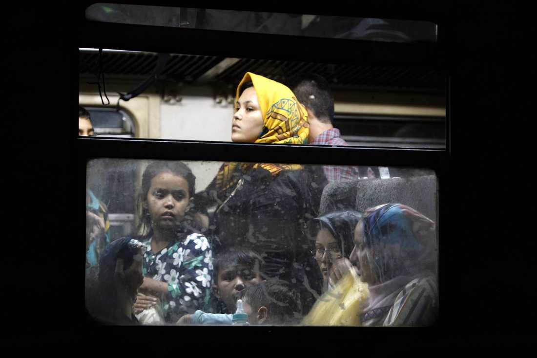 Antalet flyktingar som försöker ta sig över från Serbien till Ungern har ökat med 2 500 procent på fem år, enligt Amnesty International.