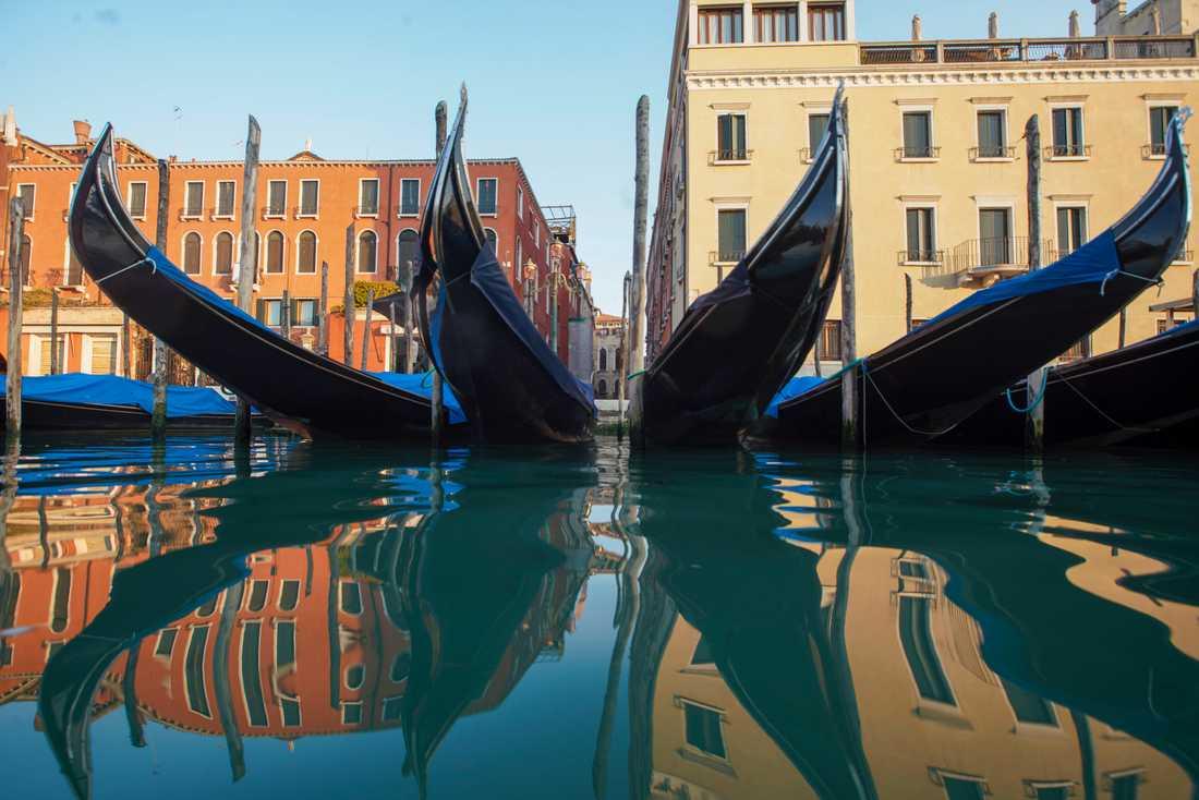 När gondolerna i Venedigs kanaler stannade så klarnade vattnet och fiskarna återvände – en oväntad konsekvens av viruset. Arkivbild.