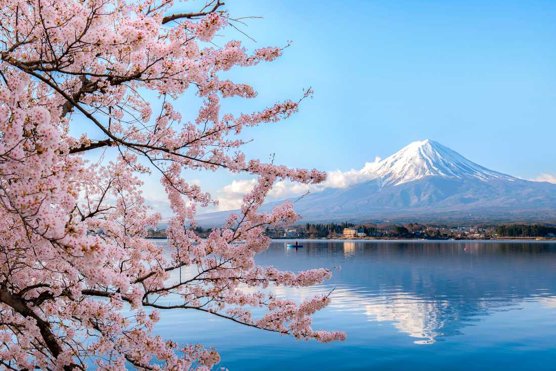Det finns en del regler att leva efter i Japan.