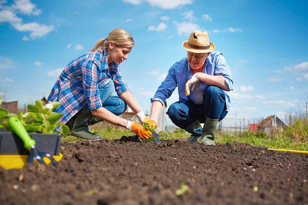 Dags för trädgårdsarbete. Börja med att jordförbättra rabatten.