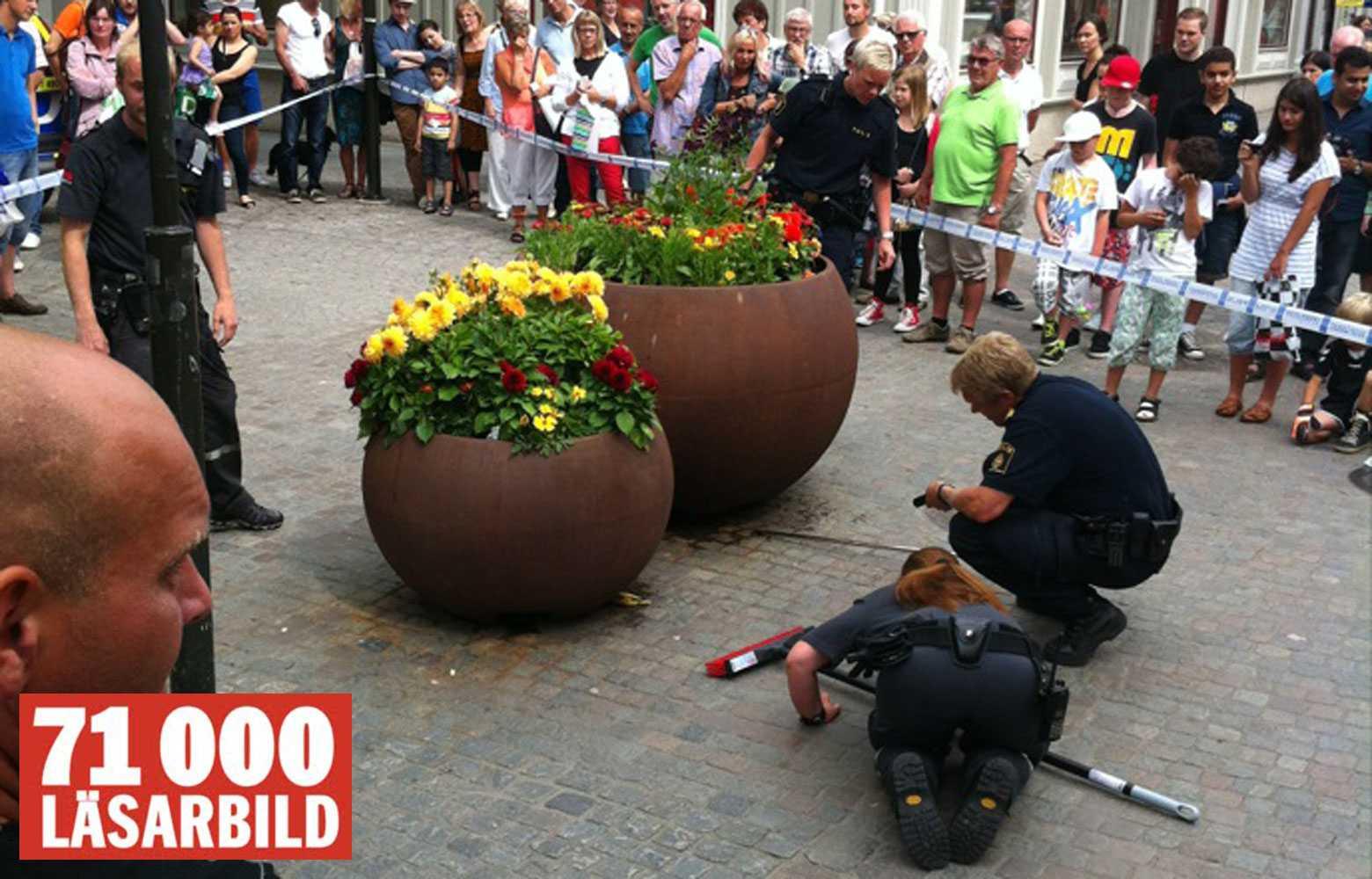 SVÅRFÅNGAD Poliser jagade den förrymda ormen med kvastar och kartonger.