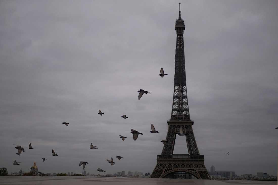 Polisen oskadliggjorde en knivman i Paris på fredagen.