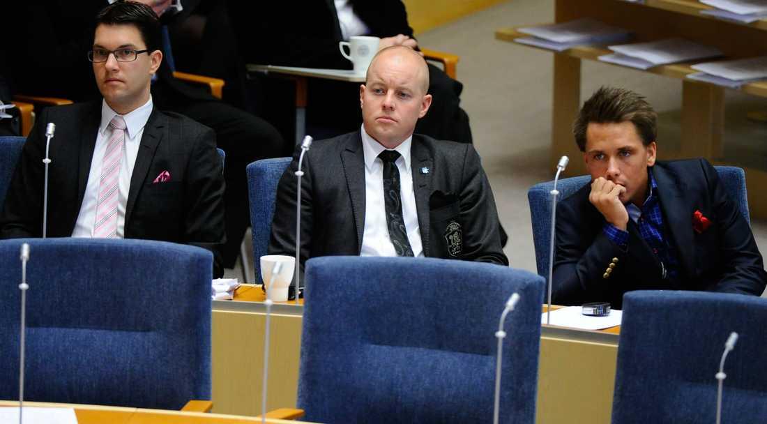 Jimmie Åkesson, Björn Söder och William Petzäll i riksdagen.