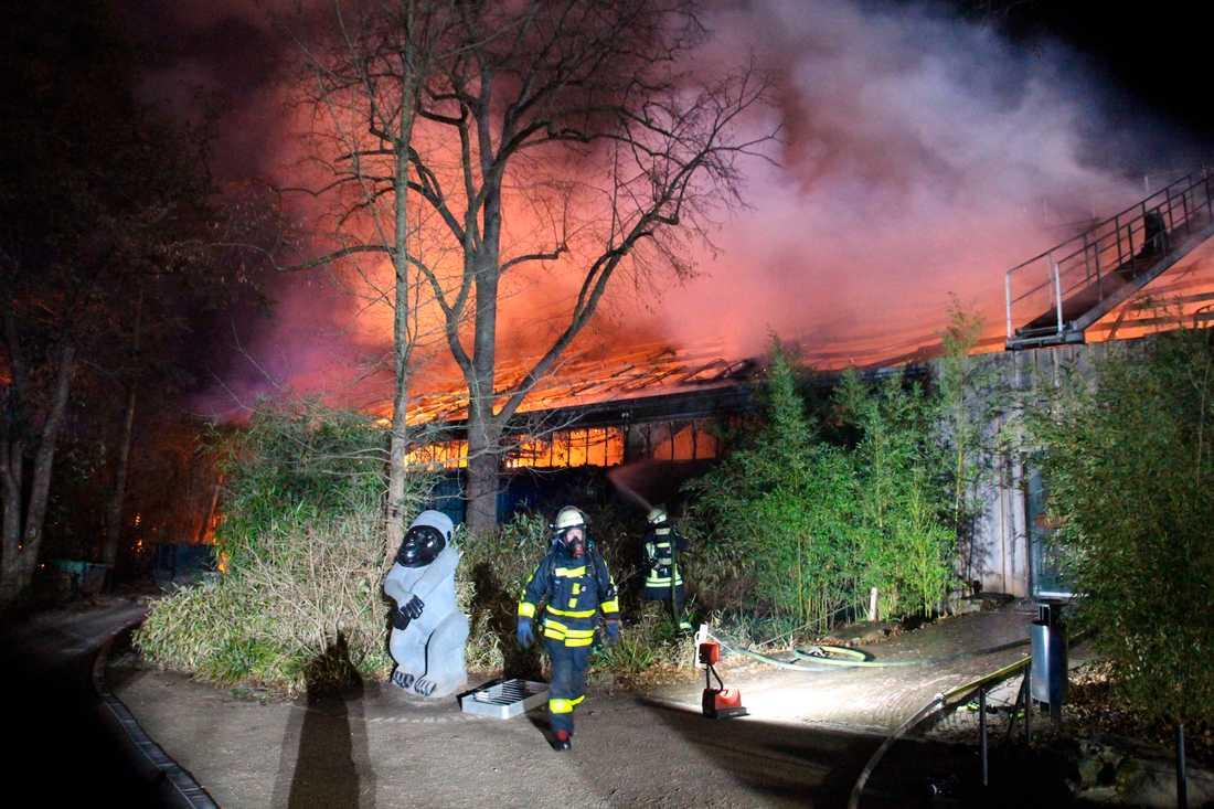 Fyrverkeripjäser kan ha orsakat branden.