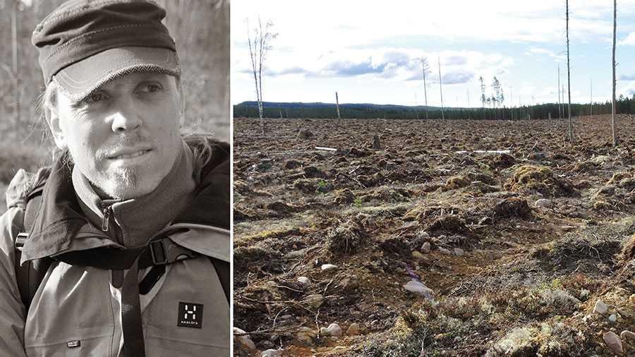 Politiker som yttrar sig om skogsbruk borde veta att det pågår en förlust av den biologiska mångfalden i svenska skogar på grund av vårt industriella och storskaliga kalhyggesskogsbruk. Om inte så rekommenderar jag dem att läsa på. Då ökar chansen att ta vettiga beslut, skriver Sebastian Kirppu.