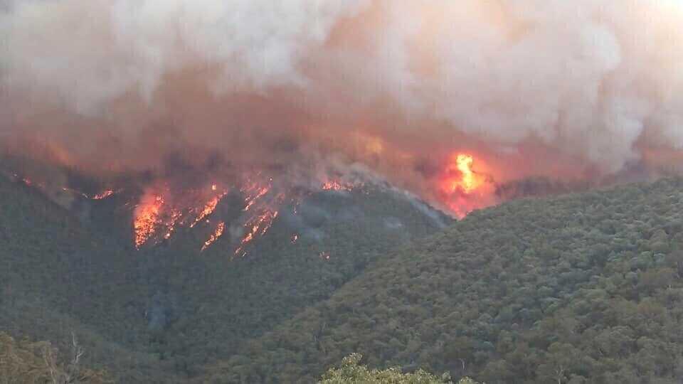 Skogsbränderna i Gippsland i Victoria i torsdags. Bild från den lokala miljömyndigheten.