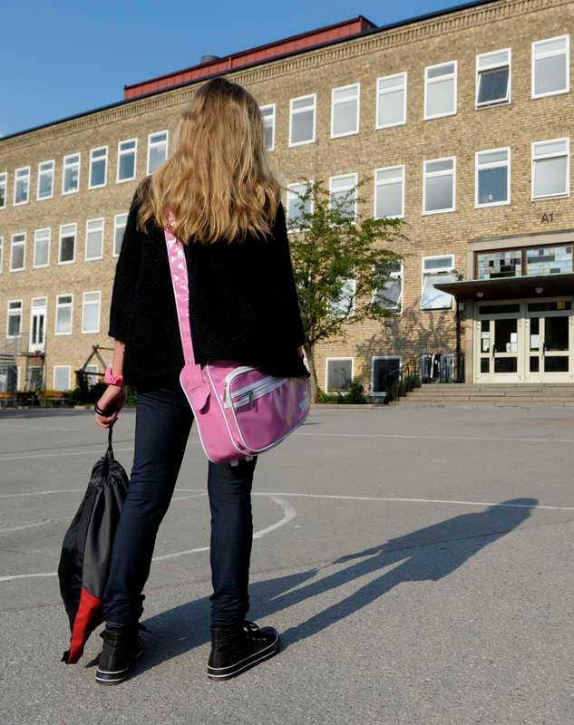 """Skattebetalarna vill ha en så bra skola som möjligt – """"riskkapitalisterna"""" vill ha en så vinstgivande skola som möjligt. Det är två önskningar som inte går ihop."""