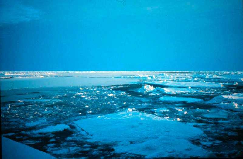 NORDPOLEN: 150 000 kvadratkilometer is försvinner Polarisen smälter i rekordfart och är nu mindre för årstiden än den var rekordåret 2010. Isen smälter för närvarande med en hastighet av 100 000 till 150 000 kvadratkilometer per dag, enligt det arktiska forskningscentret NSIDC. Med nuvarande fart kommer mindre is än vad som någonsin tidigare registrerats att finnas kvar när  avsmältningen i Arktis når sitt  säsongsmax i september.