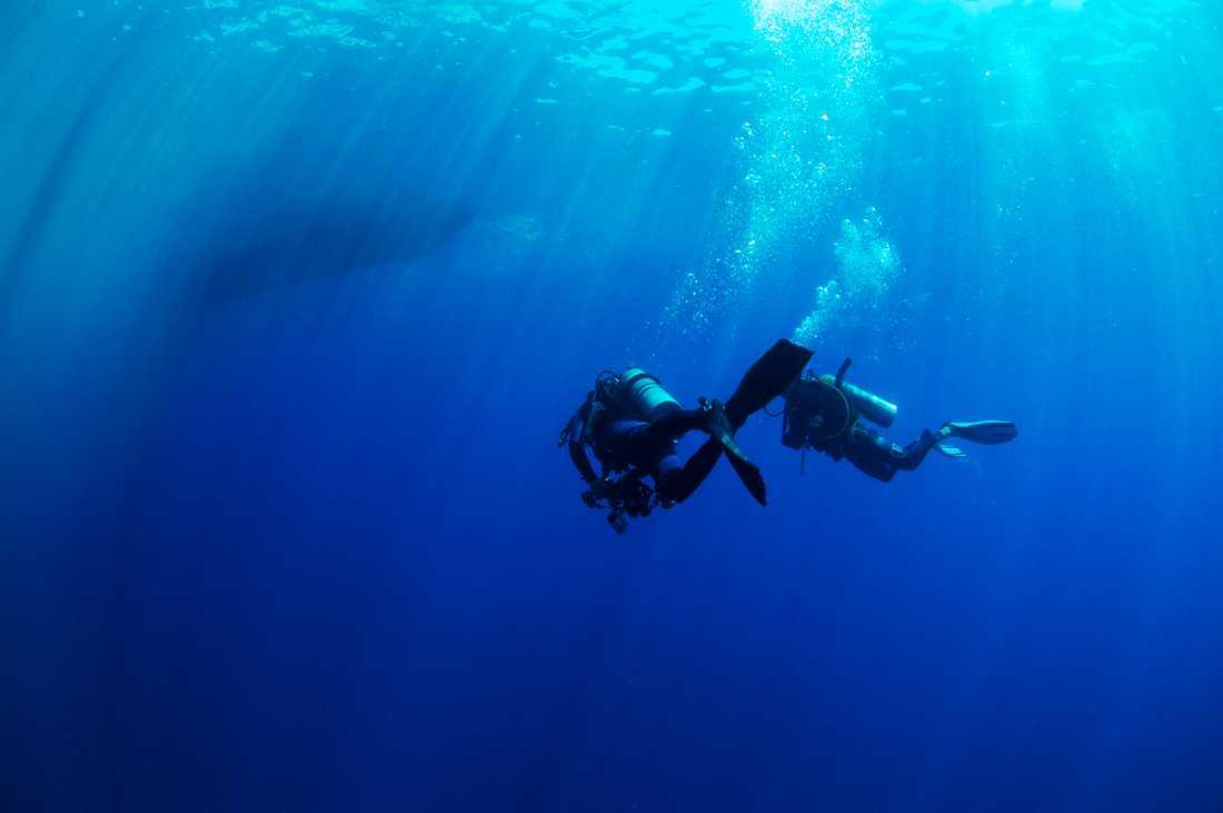 Världens bästa dykning finns i Filippinerna.