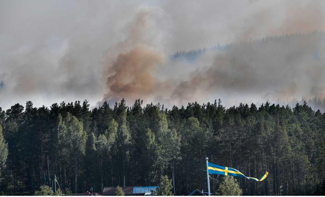Skogsbrand i Enskogen utanför Ljusdal.