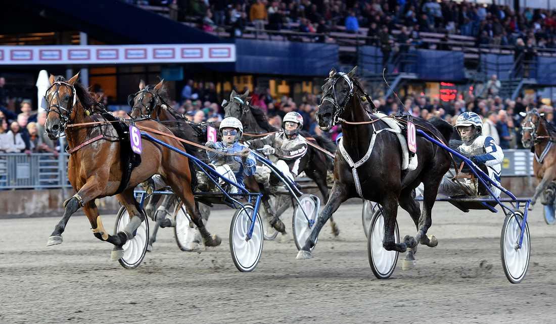 Anna Mix är en av hästarna som startar på lördagens V75 där en ensam vinnare kan ta hem 43 miljoner kronor.