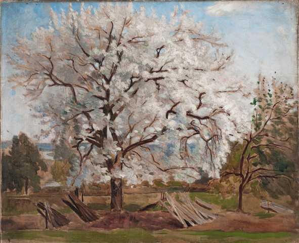 """Frisk """"Blommande äppelträd"""", 1864, olja på duk. Den sista friska sommaren målade Hill en hel svit av blommande fruktträd."""