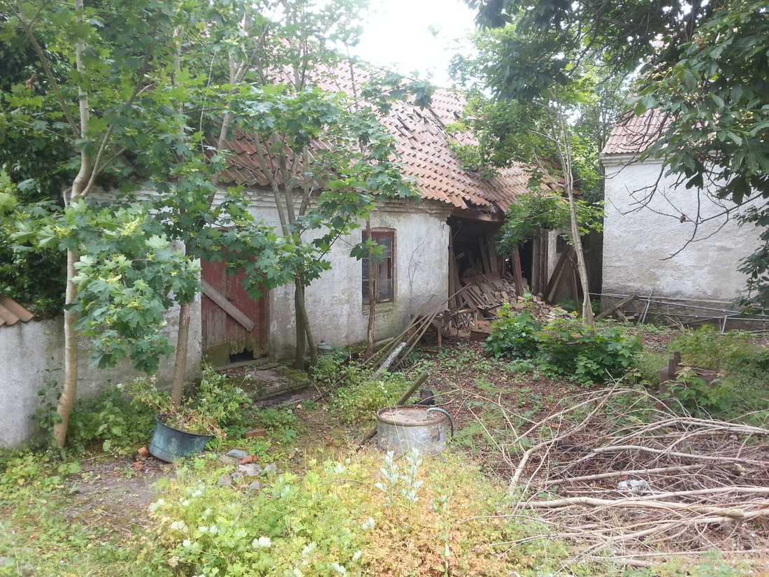 Gårdsplanen var full av träd som växte alldeles inpå husen, det låg högar med skrot och skräp och kullerstenen var täckt av ett tjockt lager av jord och ogräs.
