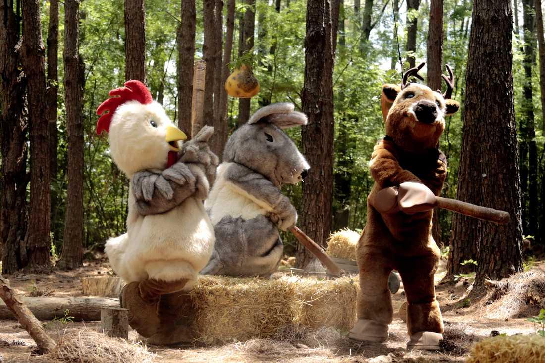 """I Kanal 5:s nya gameshow """"Wild Things"""" ska par guida varandra genom en hinderbana – utklädda till djur."""
