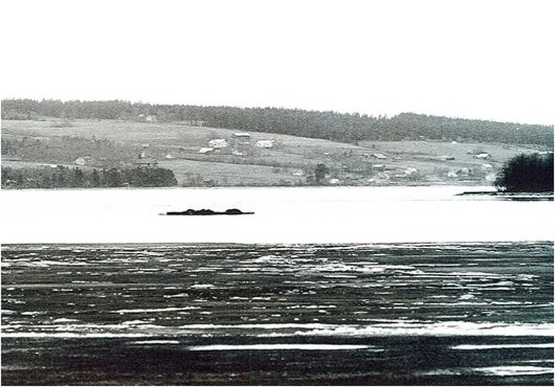 Storsjöodjuret På det här fotot från 1966 sägs Storsjöodjuret synas ovanför vattnet för en stund. Foto: HALLINGS FOTO/JAMTLIS ARKIV