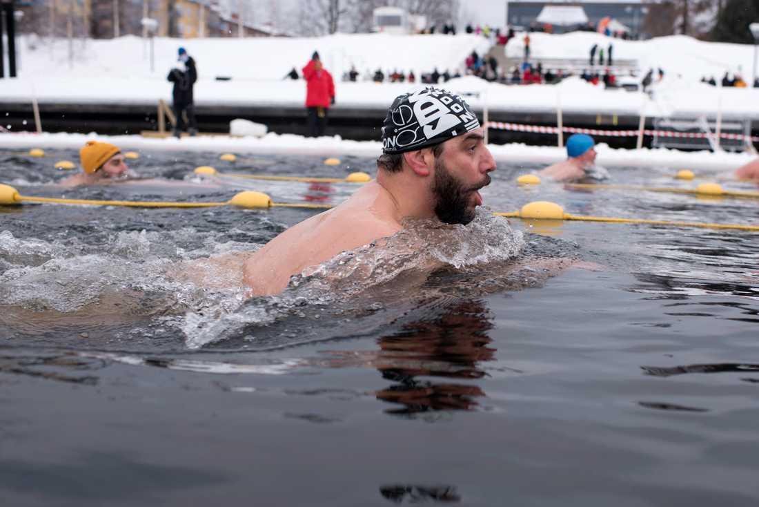 Strax över nollan i vattnet och minus tio i luften när simmare från hela världen tävlade i vintersim i en vak i Skellefteå.