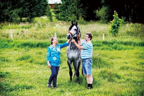 Hästarna är ett av Mogens och Anitas gemensamma intressen.