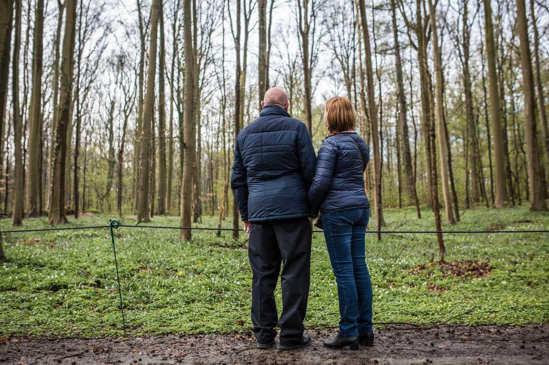 Till den här skogsgläntan tyckte belgiska Maïlys Dereymaeker, som dog i terrordådet på Drottninggatan 2017, om att gå. Föräldrarna vill inte framträda med sina ansikten.