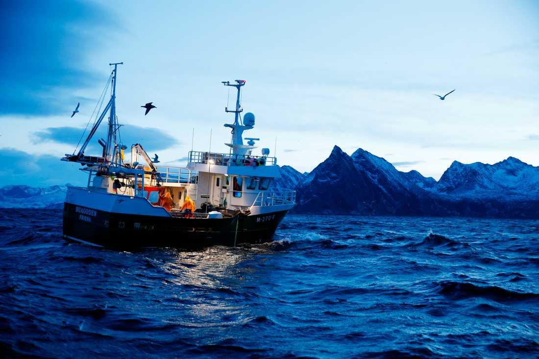 Torskfiske utanför Norge 2015. Arkivbild.