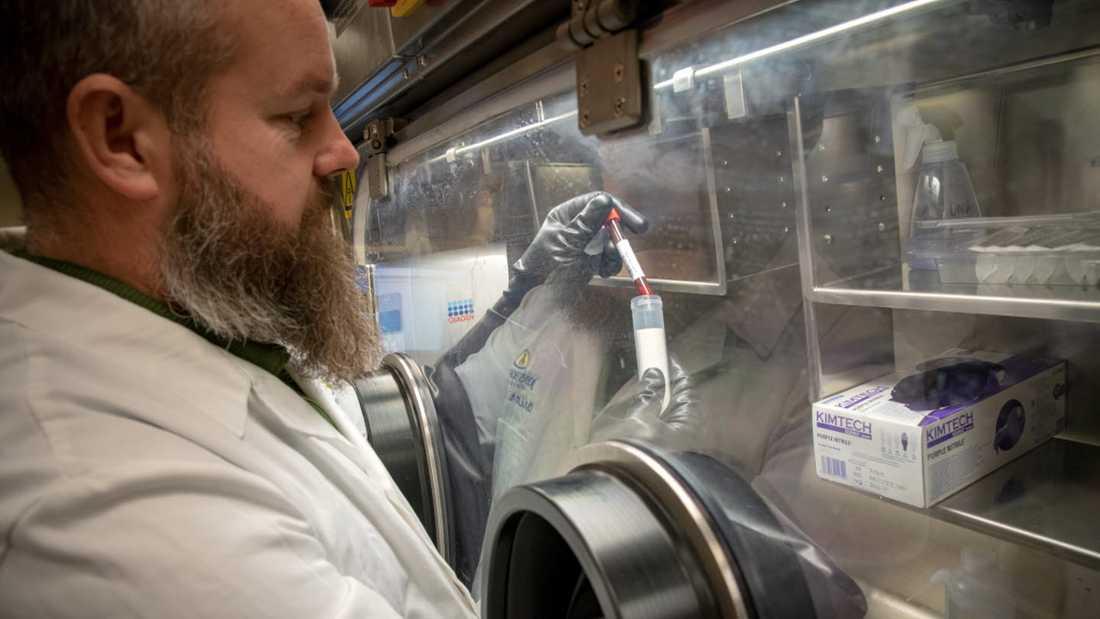 Christer Larsson är laboratoriechef på det mobila biologiska laboratoriet.